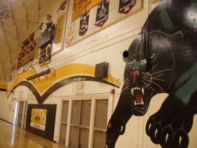 Panther Gym